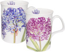 Set of Two Agapanthus Mugs