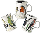 Garden Birds Mug - Assorted Set of 3 Fine Bone China Mugs
