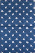 USA Stars and Stripes Tea Towel