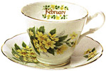 Flower of the Month, February - Cup and Saucer