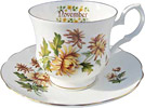Flower of the Month, Novemember - Cup and Saucer