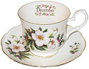 Flower of the Month, December - Cup and Saucer